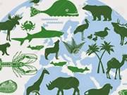 """2019年国际生物多样性日:""""我们的生物多样性,我们的食物,我们的健康"""""""