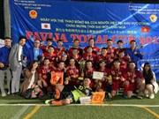 旅居日本越南人足球锦标赛吸引32支球队参赛
