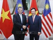 越南政府副总理兼外长范平明与马来西亚外交部长赛夫丁举行会谈