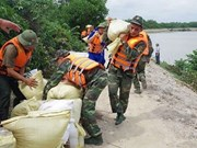 气候变化严重后果与越南的应对措施