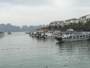 公交船 ——下龙湾的新颖旅游服务