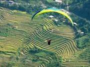 """2019年""""在放水梯田上飞翔"""" 滑翔伞节吸引100多名飞行员参加"""