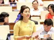 第十四届国会第七次会议:国会代表对安全秩序情况踊跃讨论