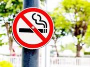 河内努力创建无烟旅游环境