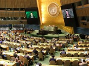越南与联合国安理会:为世界和平与安全贡献力量