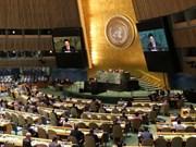 越南与联合国安理会:国际朋友对越南予以信心和支持