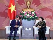 越南国会主席阮氏金银会见韩越友好议员小组主席金贺勇
