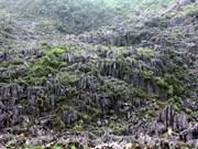 郑廷勇批准制定同文岩石高原全球地质公园总体规划调整方案