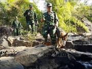 越柬加强协调 圆满完成边境安全保护任务