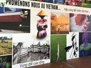 越南文化亮相法国舒瓦西勒鲁瓦市文化节