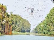 别具一格的朗森湿地保护区