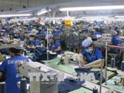 EVFTA和EVIPA:越南正成为充满吸引力的投资乐土