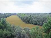 同塔梅生态保护区努力实现可持续发展