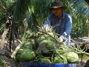 越南槟椥省主力产品出口情况大幅增长