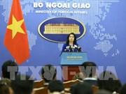 越南外交部发言人:越南要求严格处理韩国丈夫暴打越南妻子一案