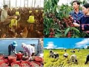 《自贸协定》带来广阔市场: 为越南融入国际经济夯实基石(一)