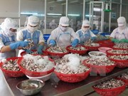 《越欧自贸协定》——提高越南企业管理能力和推动农产品出口的良机