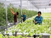 坦桑尼亚希望越南帮助发展农业