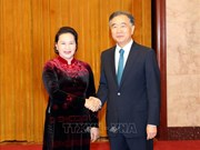 越南国会主席阮氏金银会见中国全国政协主席汪洋