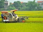 2019年越南经济中期报告:经济增长有望超过国会提出的目标