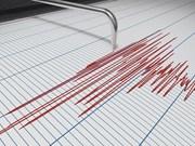 印尼巴厘岛南部海域发生6.1级地震 未引发海啸预警