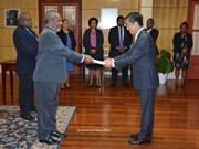 巴布亚新几内亚重视对越友好合作关系
