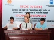 越南通过应用技术4.0推动少数民族妇女经济赋权