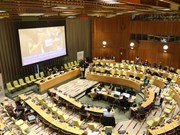 越南在联合国分享实施可持续发展目标的经验