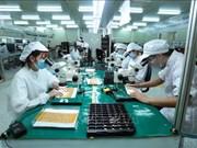 新加坡媒体:越南正转型成为东南亚最具吸引力的创业生态体系