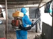 2019年初至今越南登革热病例同比增长两倍