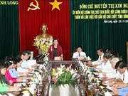 越南国会主席阮氏金银与永隆省骨干干部举行工作座谈会