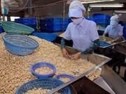 越南对中国出口的腰果出口猛增
