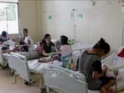 泰国和菲律宾努力应对登革热爆发