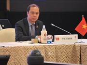 越南出席东盟与中日韩高官会及东亚峰会高官会
