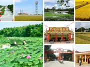 越南北部山区达到新农村建设标准的乡份比例达26.45%