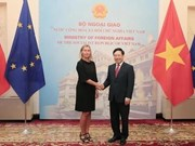 越南政府副总理兼外长范平明与欧洲委员会副主席举行会谈
