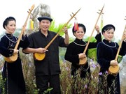 岱依族妇女的靛蓝文化和美丽服装