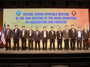 东盟农业和林业高官会议在承天顺化省开幕