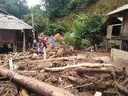 越南各地方抓紧展开第三号台灾后恢复重建工作