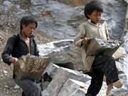 实现供应链透明化 迈向消除童工的目标