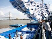 越南前7月大米出口量超过400万吨
