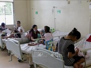 菲律宾登革热暴发 政府依旧禁用有风险疫苗