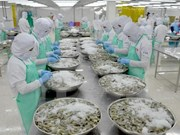 越南水产品对中国的出口活动呈现复苏态势