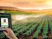 在农业发展中加强科技应用