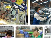 越南企业迎来德国市场的经营合作大机会