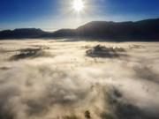 大叻市沉浸在茫茫的迷雾之中 风景美如天堂(组图)
