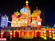 2019年越南—韩国第一次灯光节(组图)