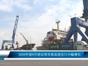 2020年前8月胡志明市商品进出口小幅增长