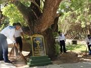 组图:长沙群岛上主权界碑——遗产树