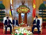 阮晋勇总理接见文莱国王